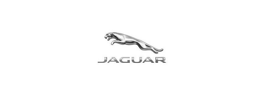 Led Jaguar